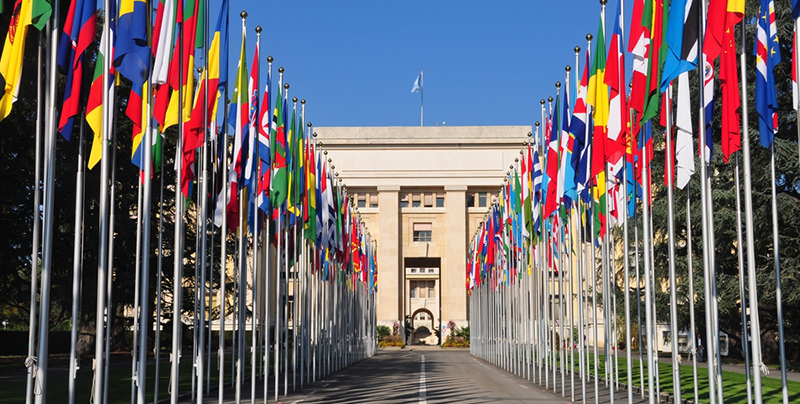 Governments take first step towards an official UN World Consumer Protection Week